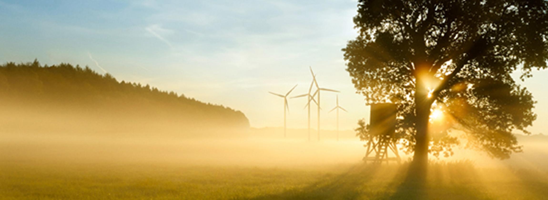 Nachhaltigkeit-2300x840