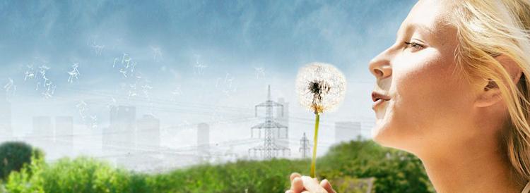 Nachhaltigkeit_2300x840